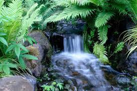 springs-of-living-water